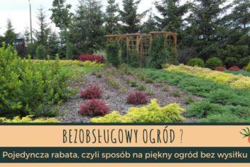 Chcesz mieć bezobsługowy ogród? - pojedyncza rabata