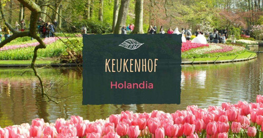 Ogród Keukenhof