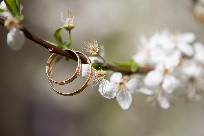obrączki jak biżuteria ogrodowa