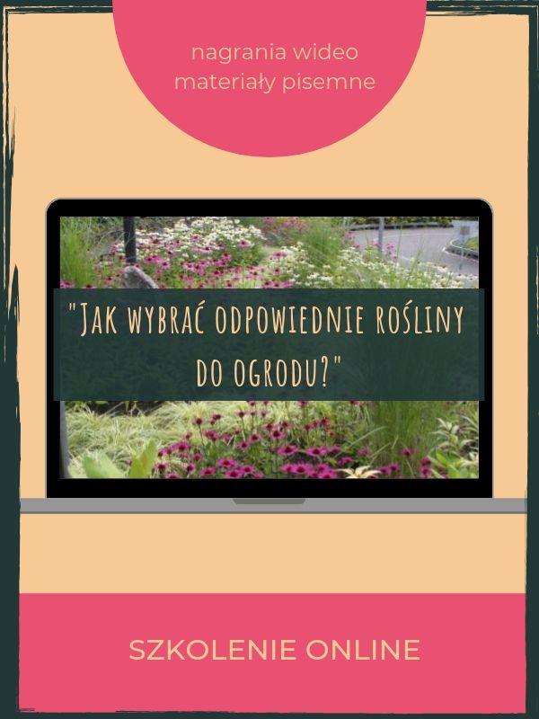 jak-wybrac-odpowiednie-rosliny-do-ogrodu